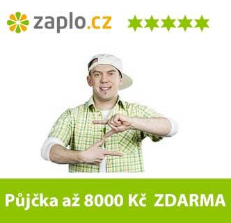 zaplo-popup2